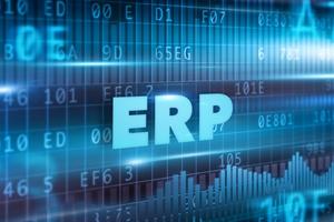 ERP和两层式战略:适用于任何组织机构