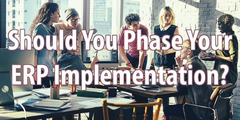ERP实施战略选择指南