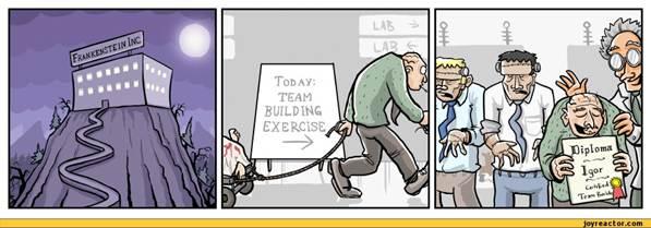 首席财务官在团队建设中扮演什么样的角色?