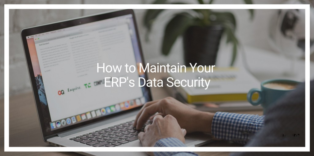 How to Maintain Your ERP's Data Security